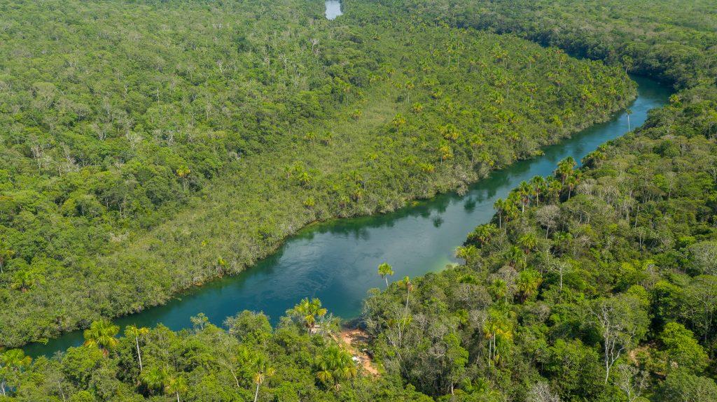Area de preservação (2)